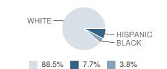 Eudora Christian School Student Race Distribution
