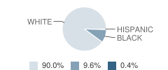The Cathedral School Student Race Distribution