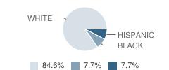 Chaparral Christian School Student Race Distribution