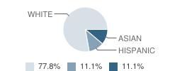 Children S World School Student Race Distribution