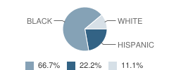 Montessori Child Development Center School Student Race Distribution