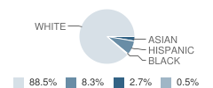 Our Lady Queen of Angels School Student Race Distribution