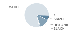 School of the Madeleine Student Race Distribution