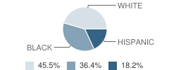The Creative Learning Academy Student Race Distribution