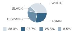 Veritas Christian Academy Student Race Distribution