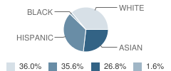 Sts Felicitas and Perpetua School Student Race Distribution