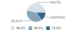 Accelerated Learning Academy Student Race Distribution