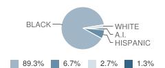 Excel Institute School Student Race Distribution