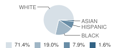 Intensive Education Academy Student Race Distribution
