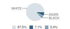 The Children's School Student Race Distribution