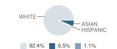 The Grammar School Student Race Distribution
