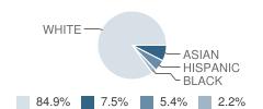 The Montessori School Student Race Distribution