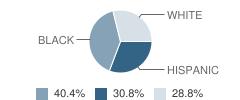 Christ Centered Academics School Student Race Distribution