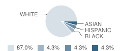 Christ Classical Academy Student Race Distribution