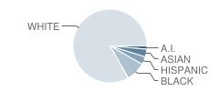 Pillar Institute School Student Race Distribution