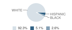 The Cape Academy Student Race Distribution
