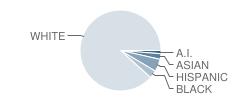 Christian Institute of Arts & Sciences School Student Race Distribution