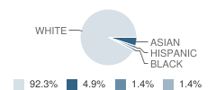 Creative Learning Academy Student Race Distribution