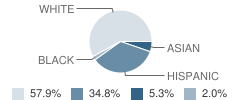 Incarnation Catholic School Student Race Distribution