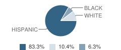 U S International Christian Academy Student Race Distribution