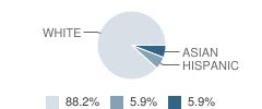 Windows Pre-School Student Race Distribution