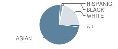 Iolani School Student Race Distribution