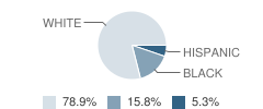 The Learning Tree Inc School Student Race Distribution