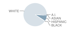 Crossing of Middlebury School Student Race Distribution