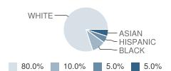 Life Christian School Student Race Distribution