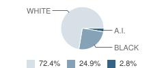 Ahoskie Christian School Student Race Distribution