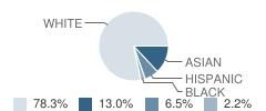 The Hopkinton Independent School Student Race Distribution