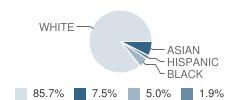 The Peck School Student Race Distribution