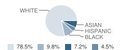 Portledge School Student Race Distribution