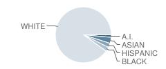 The Child School Student Race Distribution