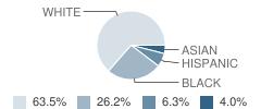 Ahrc Middle/High School Student Race Distribution