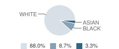 Monclova Christian Academy Student Race Distribution