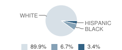 Veritas Classical Academy Student Race Distribution