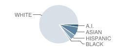 Gaarde Christian School Student Race Distribution