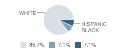 Learning Tree (The) School Student Race Distribution