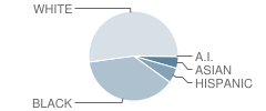 The Canterbury Episcopal School Student Race Distribution