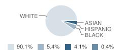 Collegiate School Student Race Distribution