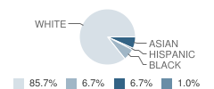 Providence Classical School Student Race Distribution