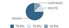 The International Children's School Student Race Distribution