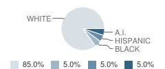 The New School of Montpelier Student Race Distribution