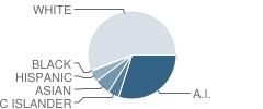 Schoenbar Middle School Student Race Distribution