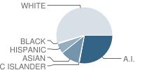 Dzantik'i Heeni Middle School Student Race Distribution