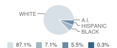 Hanceville High School Student Race Distribution