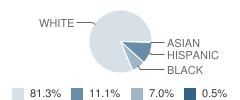 Hanceville Elementary School Student Race Distribution