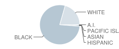 Lincoln Middle School Student Race Distribution