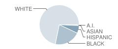Lonoke Elementary School Student Race Distribution